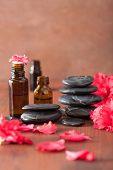 picture of azalea  - essential oil azalea flowers black massage stones - JPG