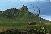 3d summer landscape