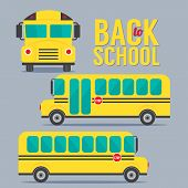 picture of driving school  - Front And Side Yellow Bus School Illustraiton - JPG