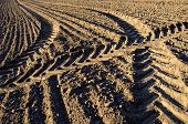 picture of cultivation  - agriculture tractor traces on cultivated farm field soil - JPG