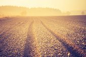 picture of plowed field  - Sad autumnal landscape with plowed fields - JPG