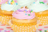 picture of sprinkling  - Pastel cupcakes with sprinkles shallow depth of field - JPG