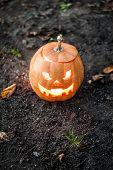 foto of jack o lanterns  - Angry halloween jack - JPG