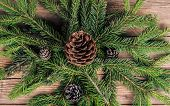 foto of bump  - christmas tree branches with bumps on wooden background - JPG