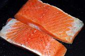 Salmon Steak3