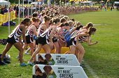 Minnesota High School Girls Perpare To Start The Roy Griak Invitational Cross Country Race