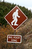 Beware Of Big Foot