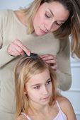 image of lice  - Mother treating daughter - JPG