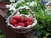 Strawberries In Basket