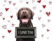 Cute Romantic Dog Says I Love You, Text On Sign Board With Red Hearts Valentine Background Animal Lo poster