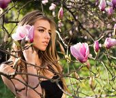 Magnolia. Spring Girl In Blooming Garden. Summer Girl And Sensual Moment. Beauty Woman Outdoors In B poster