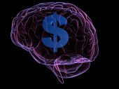 Brain And Money