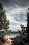Dramatic Ocean Sea Shore With Contrast Clouds At The Beach With Moody Dramatic Ambient poster
