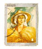 MALAYSIA - CIRCA 1969: A stamp printed in Malaysia shows Tahun Padi (year of paddy), circa 1969