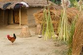 traditional rural farm hut in Terai, Nepal