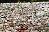 plastic bottles floating on water surface, Bicaz lake, Romania