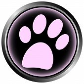 image of paw-print  - Paw button on white background  - JPG