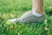 Male Feet In Gray Gumshoes On Green Grass poster