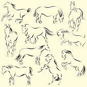 Set of ten beautiful horses
