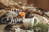 Hello December. Cup With Cones And Dry Orange With Sparkler, Fir Branch, Christmas Cookies, Cozy Kni poster