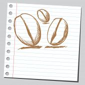 Scribble coffee beans
