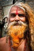 Portrait Of Holy Sadhu Man