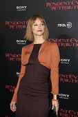 LOS ANGELES - SEP 12:  Sienna Guillory arrives at the