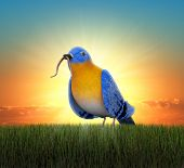 Bluebird standing in green grass, catching the worm as the sun rises behind him
