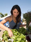picture of farmers market vegetables  - Beautiful young Hispanic woman shopping for greens at the Farmers - JPG
