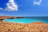 picture of papagayo  - Papagayo caleta del Congrio beach in Lanzarote at Canary islands - JPG