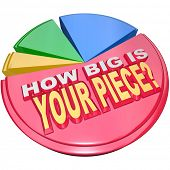 The words How Big is Your Piece on a colorful pie chart to illustrate your share of the market