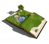 Öffnen Sie das Adressbuch mit Gras und Baum. illustrierte Konzept