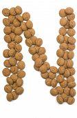 Ginger Nut Alphabet N