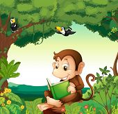 Illustration of a monkey reading a book at the forest