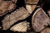 Firewood 003-130427