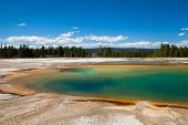 Thermal Spring, Yellowstone