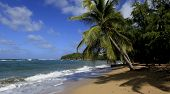 Beach of Tartane, Martinique island