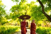 Two little Buddhist monks walking outdoors under shade of green tree, rear view, outside monastery,