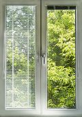 picture of louvers  - Window with blinds overlooking sunny green garden - JPG