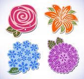image of chrysanthemum  - Vector illustration of four flowers (rose chrysanthemum hydrangea lily) isolated on background.