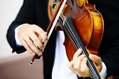 stock photo of viola  - Detail of viola being played by a musician - JPG