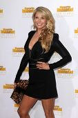LOS ANGELES - JAN 14:  Christie Brinkley at the 50th Anniversary Of Sports Illustrated Swimsuit Issue at Dolby Theater on January 14, 2014 in Los Angeles, CA