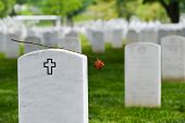 stock photo of arlington cemetery  - Headstones in Arlington National Cemetery  - JPG