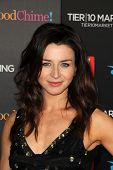 Caterina Scorsone at TV Guide Magazine's Annual Hot List Party, Greystone Mansion Supperclub, Beverl