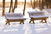 Park Benches In Winter