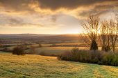 Golden Winters Morning, England