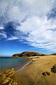 Coastline  In Lanzarote  Beach  Water And Summer