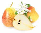 Fresh Yellow-orange Pears With Green Leaf