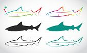 Vector Group Of Shark