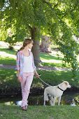 Cute blonde with her labrador dog in the park on a sunny day